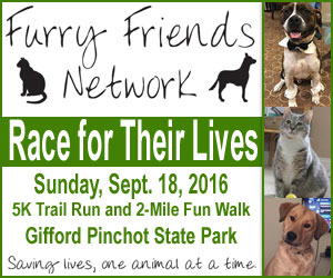 Furry Friends Network Race for their Lives 2016